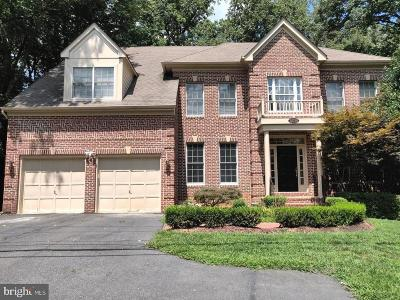 Oakton Single Family Home For Sale: 12050 Waples Mill Road