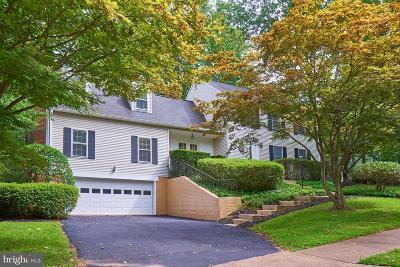 Reston Single Family Home For Sale: 2211 N Quartermaster Lane