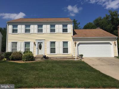 Fairfax County Single Family Home For Sale: 13118 Frog Hollow Court