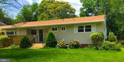 Vienna Single Family Home For Sale: 312 Branch Circle SE
