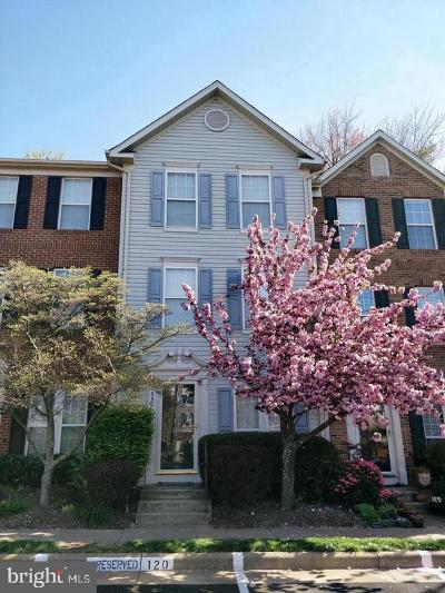 Fairfax County Single Family Home For Sale: 4330 Sutler Hill Square