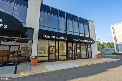 Springfield Single Family Home For Sale: 6126 Brandon Avenue #126