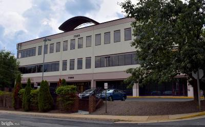 Commercial Lease For Lease: 7389 Lee Hwy