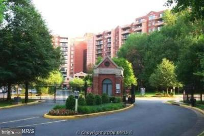 Falls Church Condo For Sale: 2230 George C Marshall Drive #208