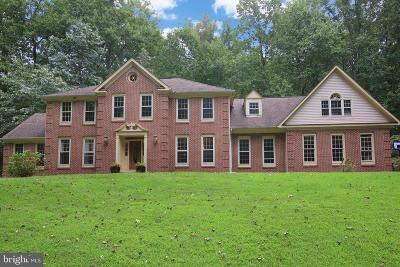 Clifton VA Single Family Home For Sale: $800,000