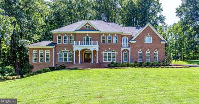 Oakton Single Family Home For Sale: 10507 Oakton Ridge Court