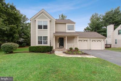 Centreville Single Family Home For Sale: 14350 Jacob Lane