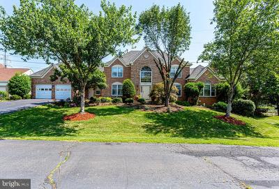 Centreville Single Family Home For Sale: 6467 Gristmill Square Lane