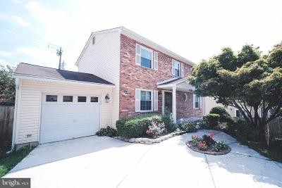 Fairfax Single Family Home For Sale: 2997 Steven Martin Drive