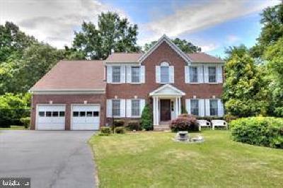 Fairfax County Single Family Home For Sale: 7104 Dudrow Court