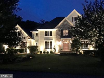 Oakton Single Family Home For Sale: 3096 Windsong Drive