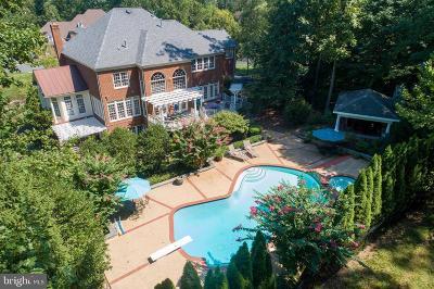 Oakton Single Family Home For Sale: 3166 Ariana Drive