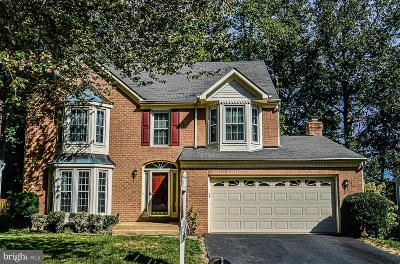 Fairfax Station Single Family Home For Sale: 9110 Wood Pointe Way