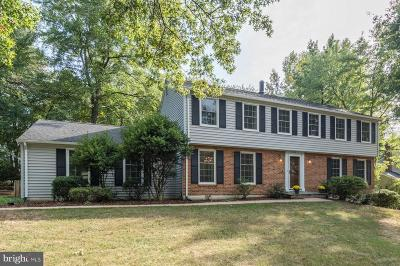 Herndon Single Family Home For Sale: 2748 Viking Drive