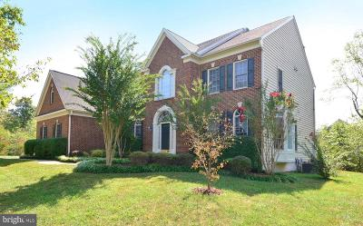 Springfield Single Family Home For Sale: 7901 South Run View