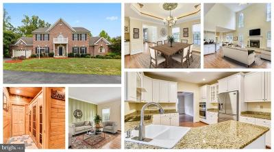 Springfield Single Family Home For Sale: 7816 Pohick Road