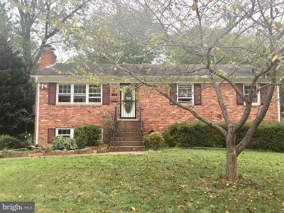 Vienna Single Family Home For Sale: 703 Meadow Lane SW
