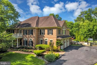 Oakton Single Family Home For Sale: 2566 Yonder Hills Way