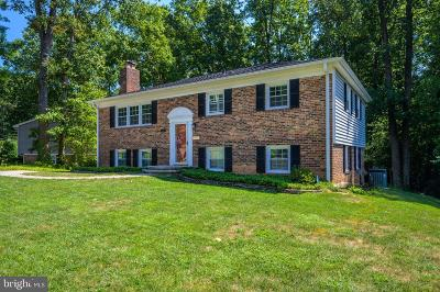 Fairfax Single Family Home For Sale: 9421 Winterberry Lane