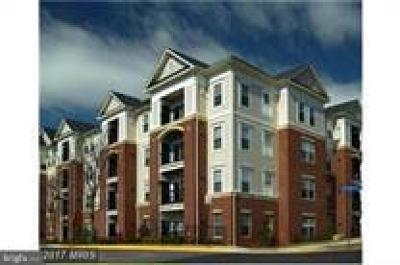 Fairfax Condo For Sale: 3851 Aristotle Court #1-321