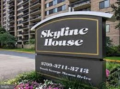 Skyline House, Skyline Square, Skyline Plaza Condo, Skyline Plaza, Savoy Park Condo Active Under Contract: 3713 S George Mason Drive #811