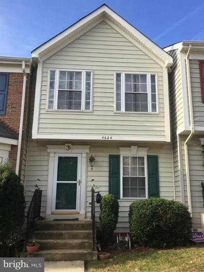 Chantilly Rental For Rent: 4624 Flatlick Branch Drive