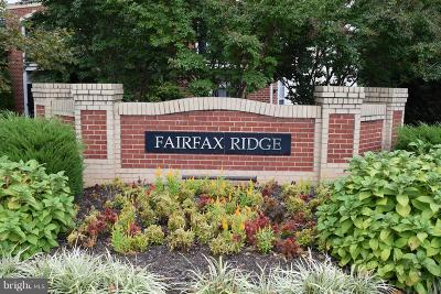 Fairfax Rental For Rent: 3851 Aristotle Court #1-417