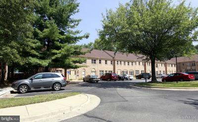 Annandale, Falls Church Condo For Sale: 5021 Backlick Road