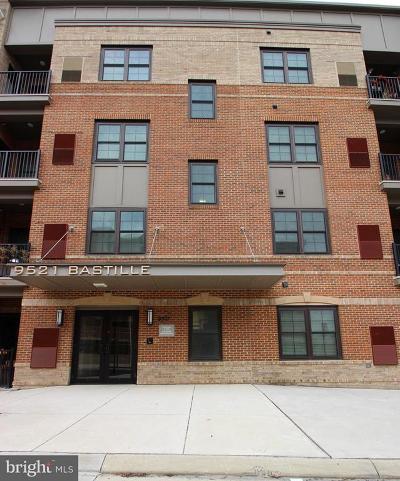 Fairfax Rental For Rent: 9521 Bastille Street #307