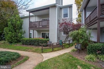 Fairfax County Condo For Sale: 9991 Oakton Terrace Road
