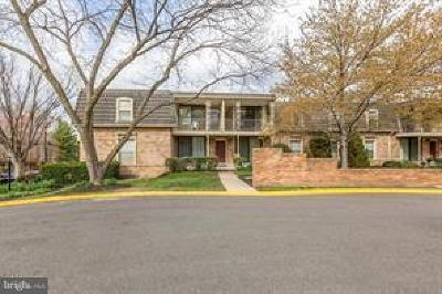Falls Church Rental For Rent: 3113 Patrick Henry Drive #533
