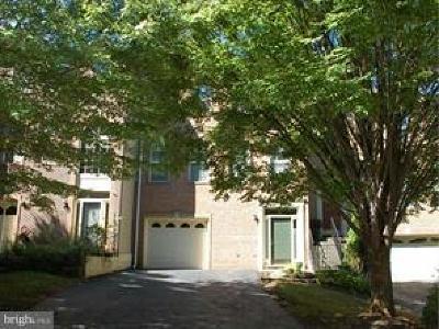 Fairfax Rental For Rent: 4012 Rosemeade Drive