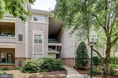 Reston Condo For Sale: 12004 Taliesin Place #22