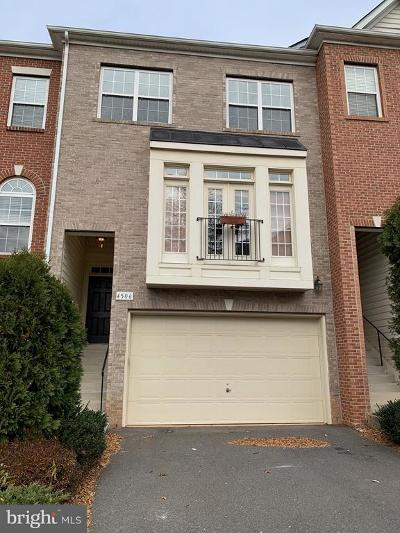 Fairfax Rental For Rent: 4506 English Holly Drive