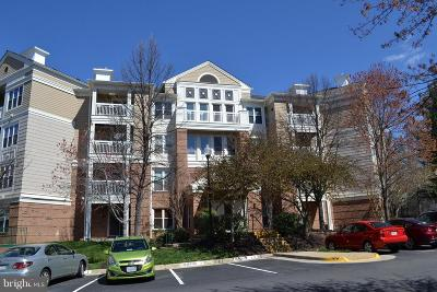 Herndon Condo For Sale: 12919 Alton Square #320