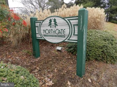 Reston Rental For Rent: 1407 Northgate Sq #2C