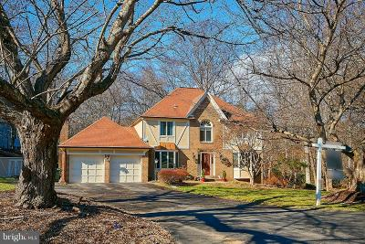 Oakton Single Family Home For Sale: 2900 Taj Drive