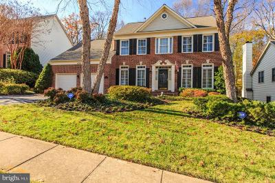 Fairfax County Single Family Home For Sale: 6130 Stegen Drive