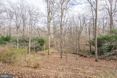 McLean Residential Lots & Land For Sale: 825 Whann Avenue