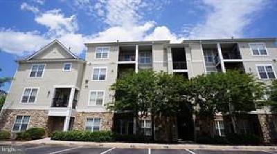 Centreville Rental For Rent: 13397 Connor Drive #L