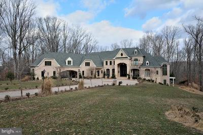 Great Falls VA Single Family Home For Sale: $6,680,000