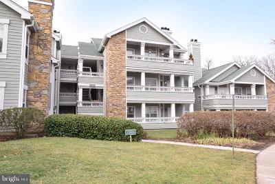 Fairfax Condo Active Under Contract: 13085 Autumn Woods Way #201