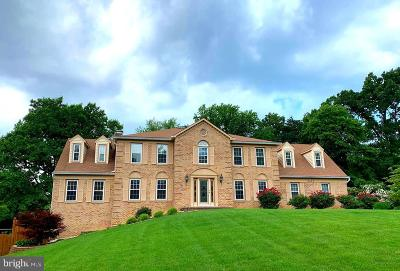 Great Falls VA Single Family Home For Sale: $1,200,000