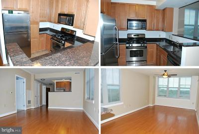 Reston Rental For Rent: 11760 Sunrise Valley Drive #613