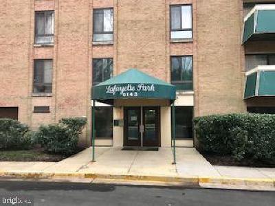 Falls Church Rental For Rent: 6143 Leesburg Pike #308