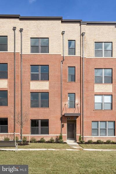 Herndon Rental For Rent: 41 Silverway Drive