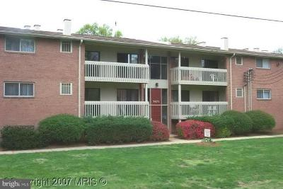 Annandale Rental For Rent: 7471 Little River Turnpike #101