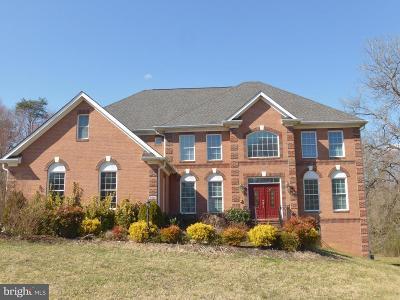 Alexandria Single Family Home For Sale: 2410 Sherwood Hall Lane