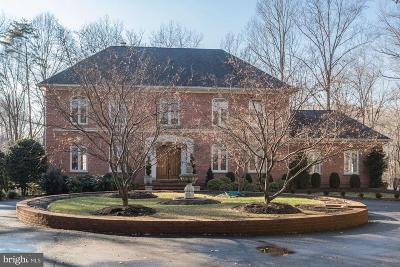 McLean Single Family Home For Sale: 9121 Mill Pond Valley Drive