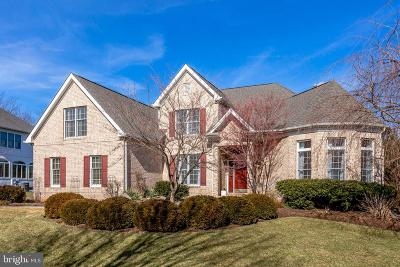 Vienna Single Family Home For Sale: 10522 Dunn Meadow Road